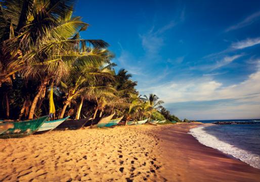 Entre plage et nature