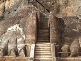 Entrée pâte de lion Sigiriya - Sri Lanka
