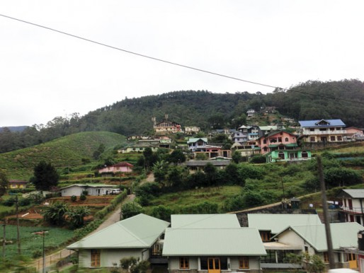Sri Lanka en immersion - Nuwara Eliya