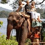 famille sur éléphant