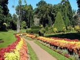 jardin-Peradeniya