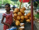 marché-Ratnapura