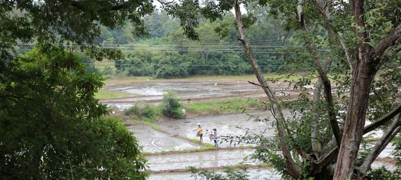 Site de rencontre sri lankais