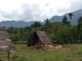 mine Ratnapura Sri Lanka