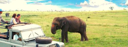 Budget voyage au Sri Lanka